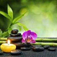 Mi is a wellness és miért jó?